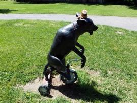 bicyclelion
