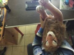 Rob lion and Constantia