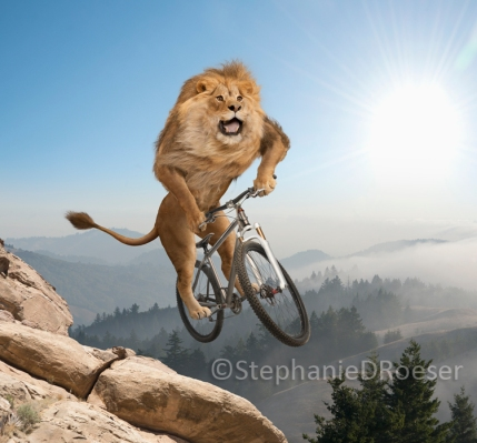 lion-riding-mountain-bike