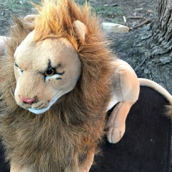 """Full"": The Seventh Rob Lion"
