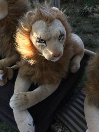 Sensual Lion Shape