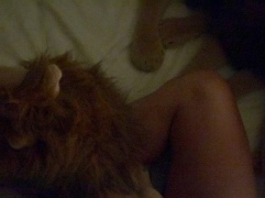 Rob and Constantia Lion Legs Part II