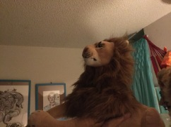 Air jumping lions, Rob Lion Young