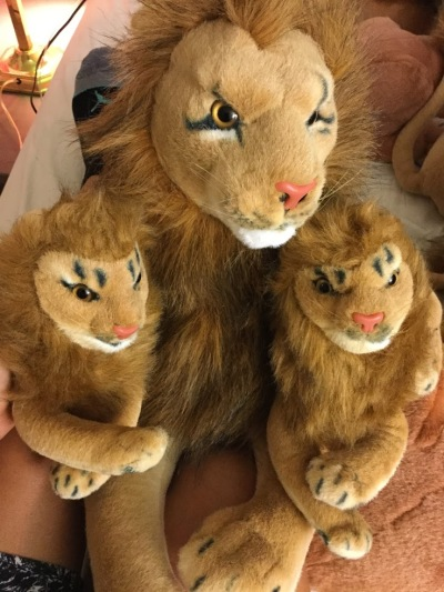 "Peace Bor Lion with cubs, ""The Power Of Peace"""