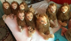 Rob Nanninga Lions, inner crew