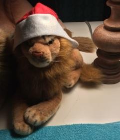 Rob small lion