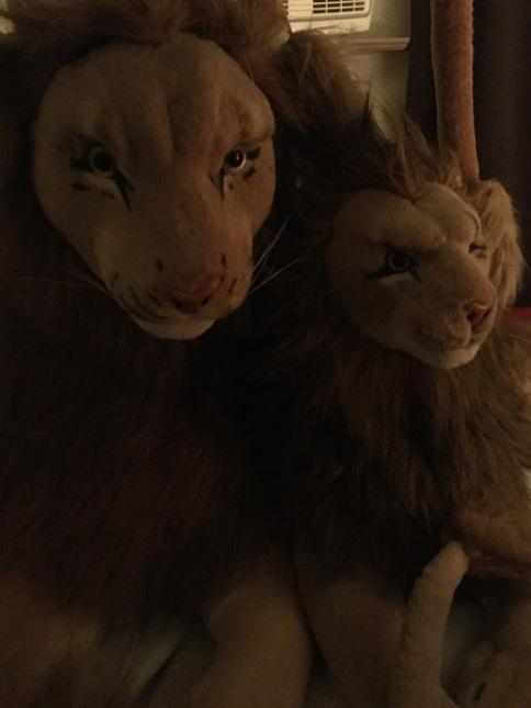 Rob lion huge and Peace Bor