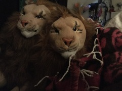 Rockstar Rob Lion and Rob Lion Full