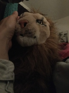 Most Male Rob Lion