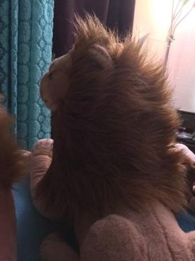 Rob Lion