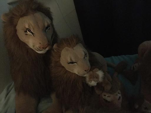 Rob Lion Love