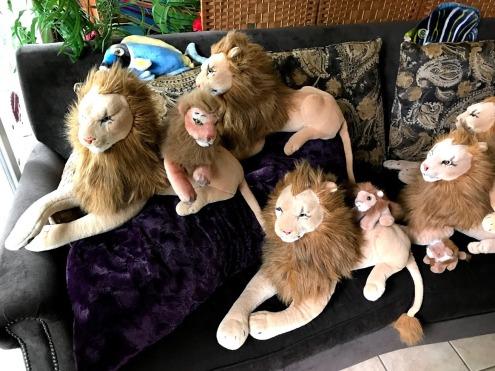Rob Lions