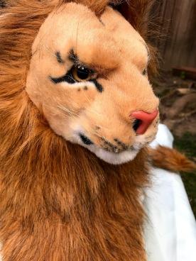 Magician Rob Lion