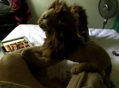 Rockstar Rob Lion