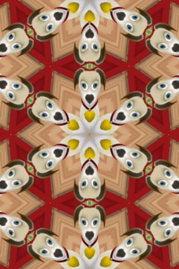 Rob made a kaleidoscope of his virtual dog Nastasia