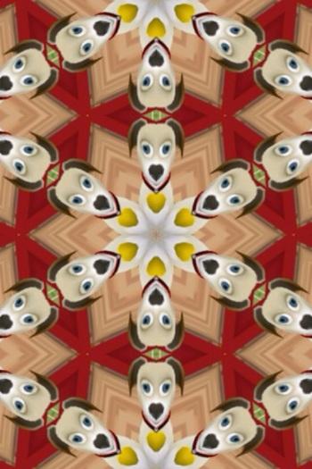 Rob made a kaleidoscope of his virtual dog Nastasia