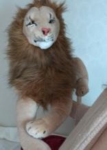 Lift-Off... Rob Magician Lion