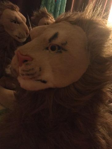 You Make Me Blush (Rob Magician Lion)