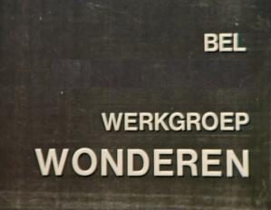 CALL WONDERS GROUP (=Rob Nanninga)