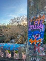 Graffiti Bridge, Winters, CA
