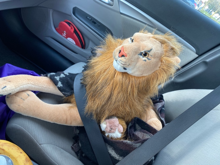 Hungry Rob Lion and Whiskers companion to Rohnert Park